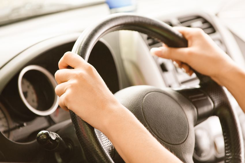 List and Numbers of Authorized Driving Schools in Dubai