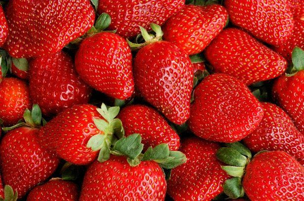 Take a look at the life stage of a strawberry in this video