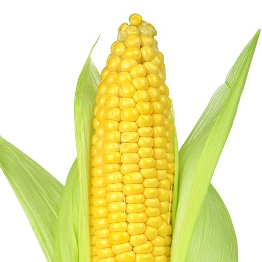 Logo of Corn