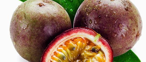 Cover Photo for Passion Fruit