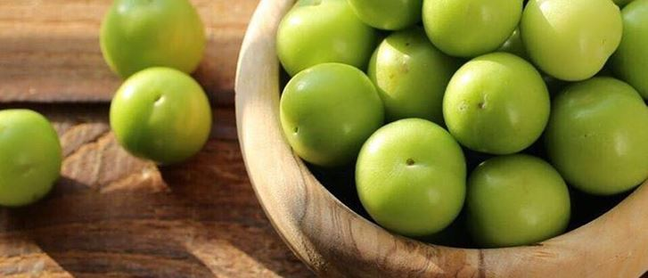 Cover Photo for Green Plum