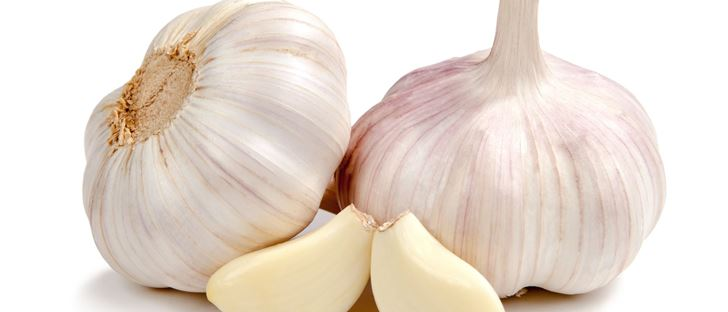 Cover Photo for Garlic